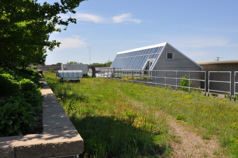 The main building features a green roof and a greenhouse that helps with building heating. Courtesy Christy Webber Landscapes.